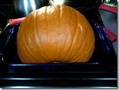 half pumpkin